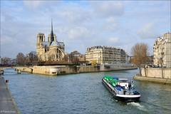Paris : Notre Dame / Ile de La Cité