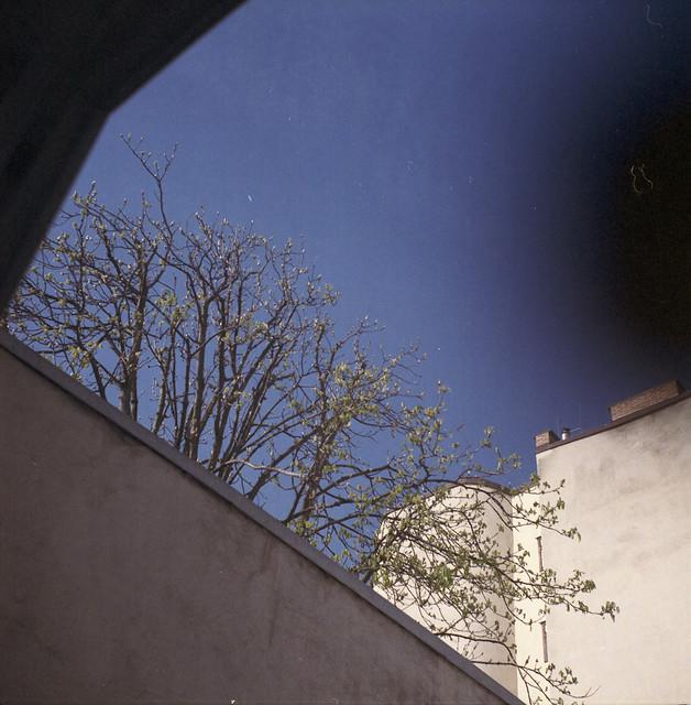 Image10-6