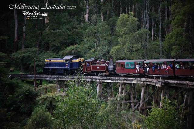 Day 2 Melbourne, Australia - Puffing Billy 13