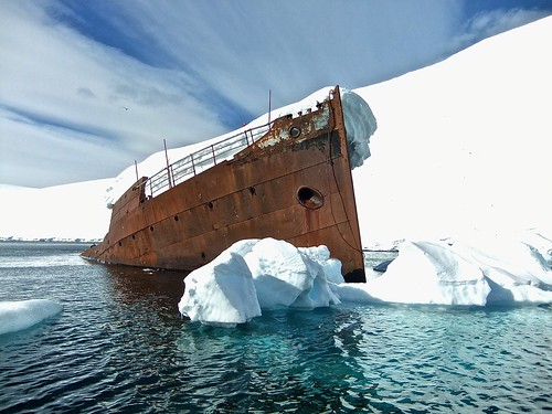 microbes in the antarctic continent essay Antarctica, on average, is the coldest, driest and windiest continent it is also the   plant life includes some grass and shrubs, algae, lichen, fungi, and bacteria.