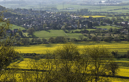 uk trees houses landscape spring village motorway cheshire transport landmark fields rapeseed helsby m56