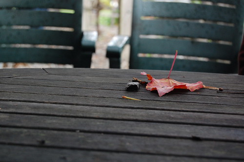 Patio furniture in fall table with leaf