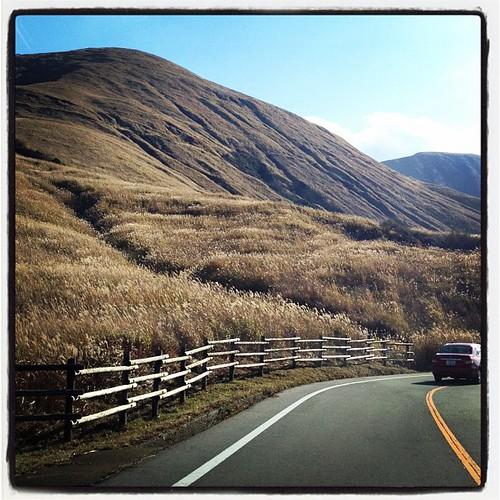 まだ飛行機まで時間が少しばかりあるので、阿蘇の山へ軽くドライブ。ススキが綺麗。車載撮影マウント持ってくるんやった…