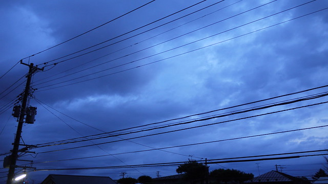2011年11月28日朝の空 くもり
