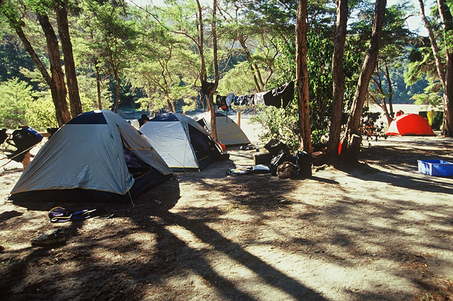 Bark Bay campsite - Abel Tasman National Park