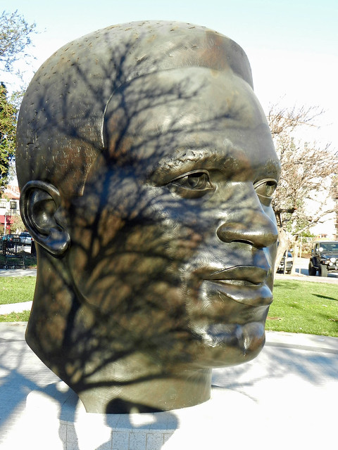 head with tree.jpg
