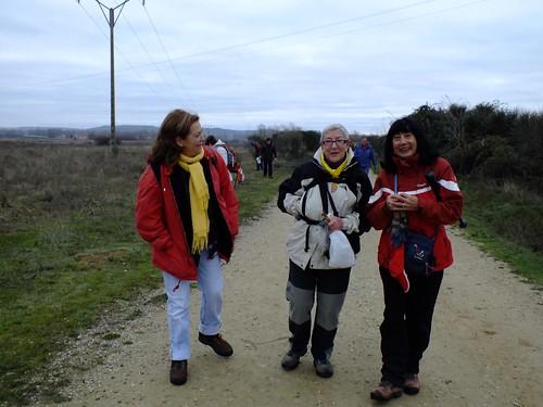 sembrando el Camino