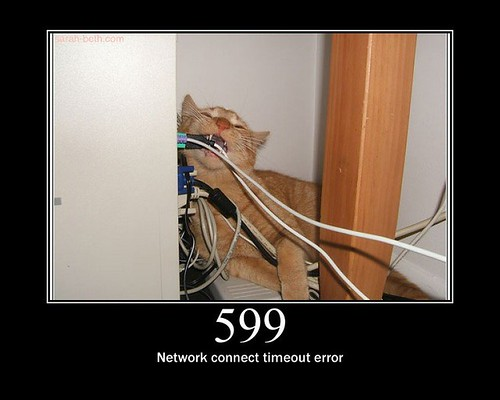 599 - Network connect timeout error