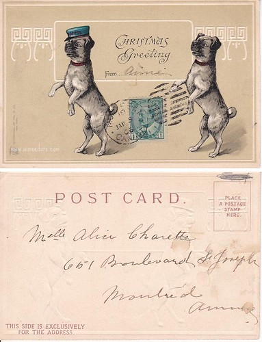 Christmas Greetings (Pugs)