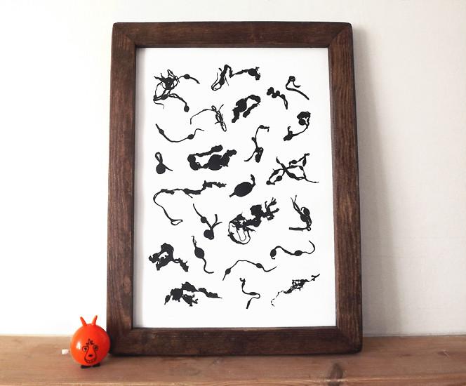 Seaweed framed