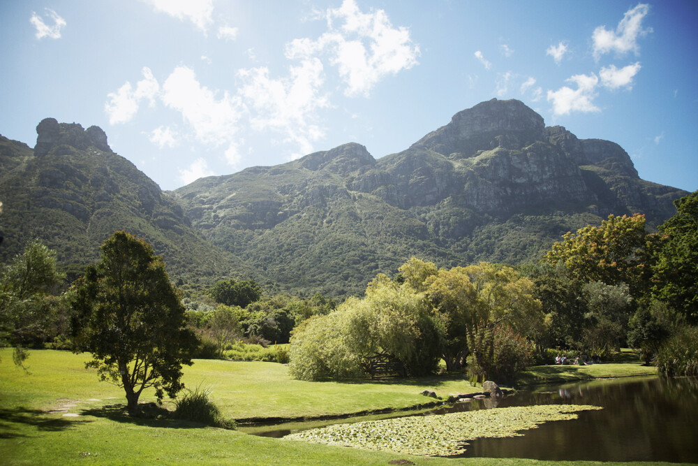 kirstenbosch_cape_town_01.jpg_effected