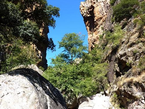 Remontée du Carciara : l'entrée du canyon