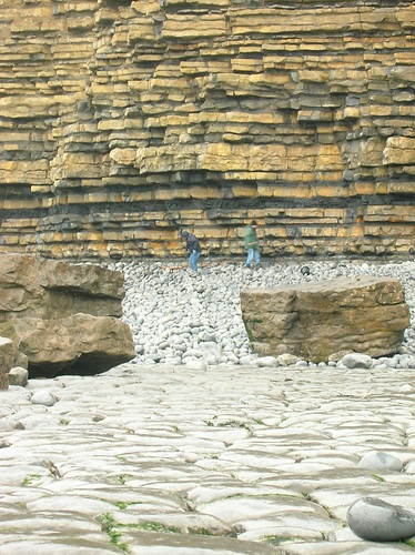 Turbidites on a wet Welsh beach