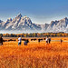 Photographers at the Tetons by Ronnie Wiggin