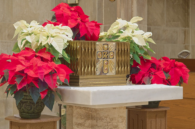 Saint Peter Cathedral, in Belleville, Illinois, USA - tabernacle decorated for Christmas