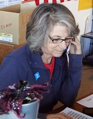 Judy S, Volunteer
