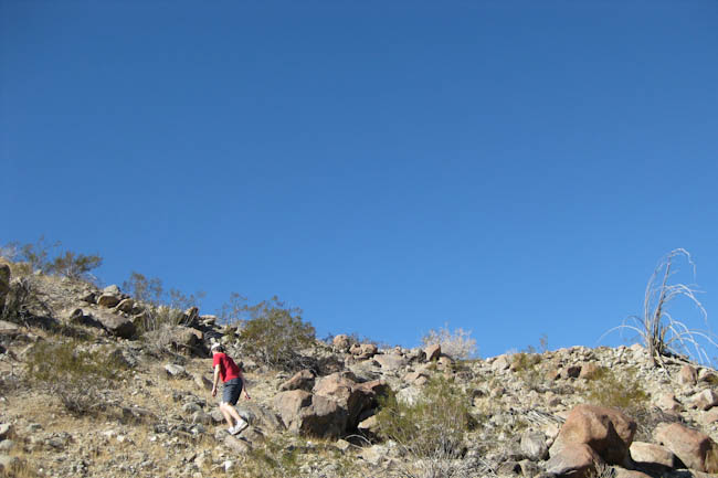 bear-creek-canyon-hike-la-quinta-3