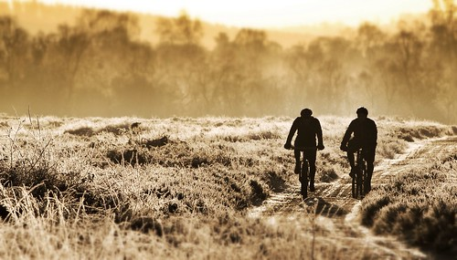 life morning trees light two orange brown men bike silhouette sepia sunrise photography freedom early frost track cyclist duo mountainbike bikes frosty explore riding together commercial browns staffordshire riders stafford cannockchase otherworldly