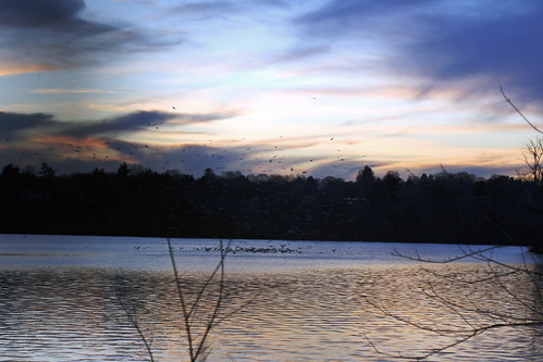 winter sunset 062