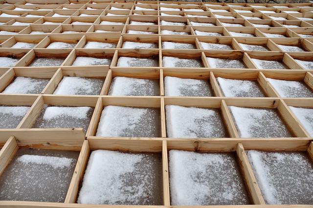 六甲枝垂れ 氷棚