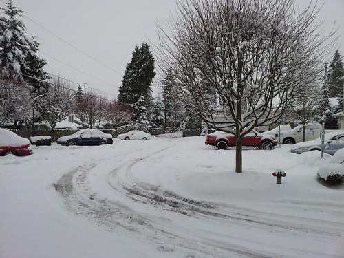 Still snowing...