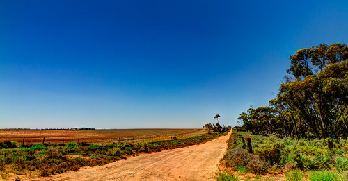 Near Victoria South Australia Border by Glen Adamson