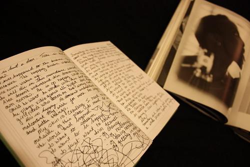 journal_by_renenutet