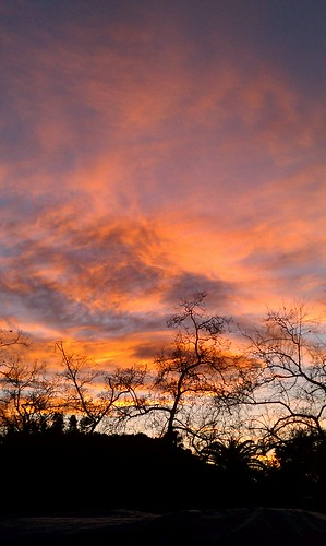 The sky above Arroyo Stables in South Pasadena at sunset
