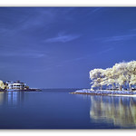 Glen Island's Reflections