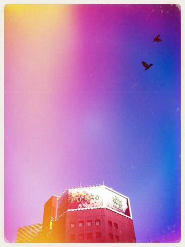 今朝の空をAnalogColorで加工しました #analogcolor