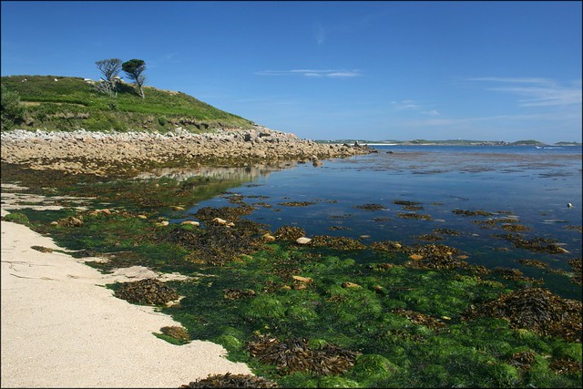 Tolls Island, St Marys, Isles of Scilly