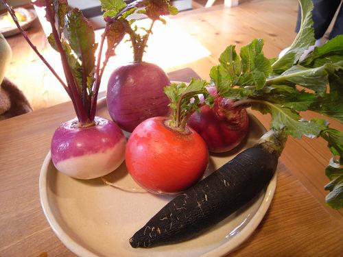極上の大和野菜がいただける『粟 ならまち店』@奈良町