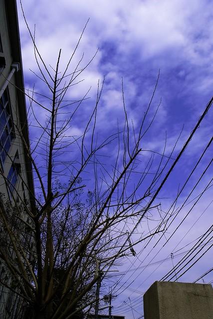 2012-02-05の空