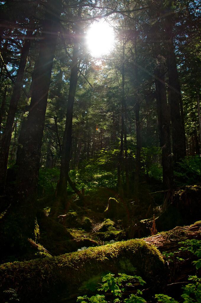 Jason.Kopp.07.PeepingSun.Juneau,Alaska.jpg