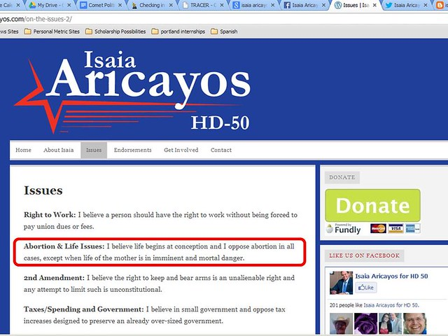 Aricayos Old Website