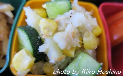 お弁当、2016-5-12、ポテトサラダ