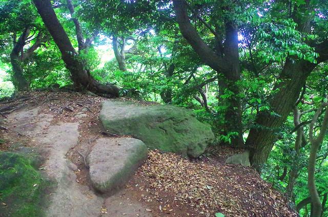 toomilog-tengoku_Hiking_trail018
