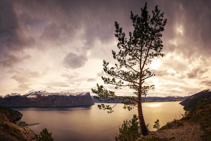 Fjord Panorama1