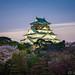 Osaka Castle by 穆曜飛
