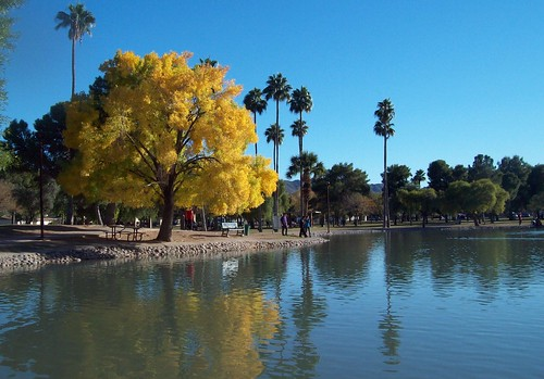 blue autumn arizona sky lake tree fall water phoenix yellow pond day clear