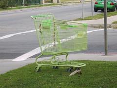 Light Green Shopping Cart
