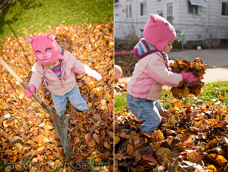 Fall Leaves5-Edit.jpg