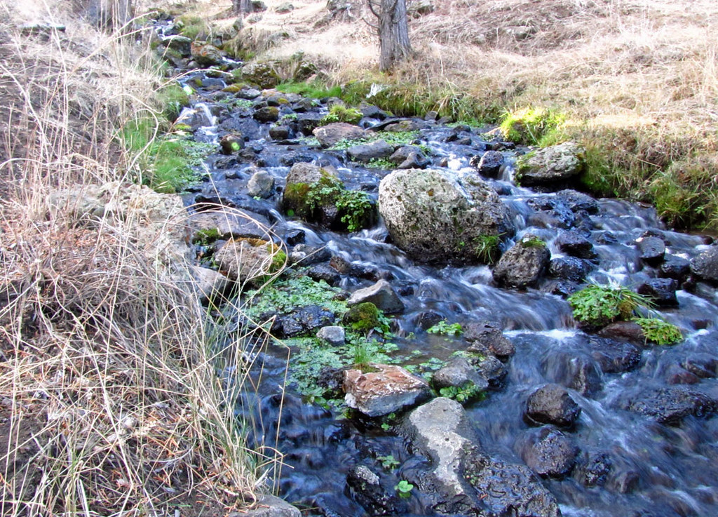Ruby Springs Runoff