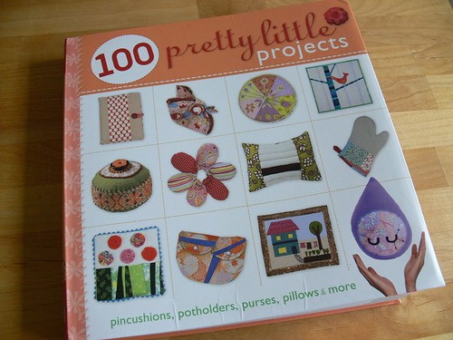 100 Pretty Little Projects Review