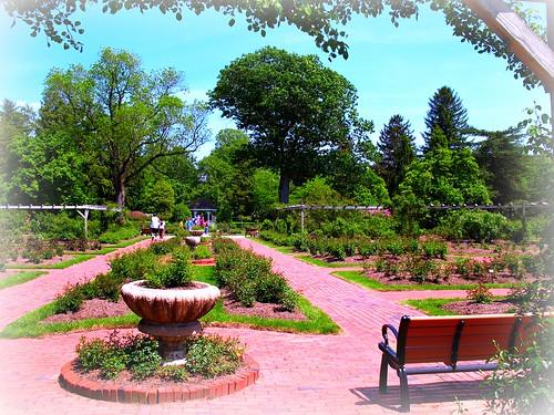 Colonial Park, New Jersey by Bogdan Migulski