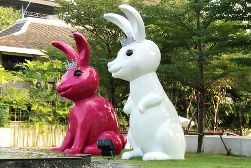Twin Rabbit @ King Power