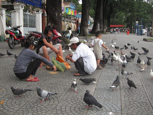 dying bird (1)