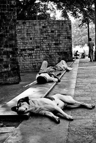 That's Life - Mayank Pandey amateur photographer from Mumbai India online photo exhibition street [hotography black and white Маянк Пандей фотограф любитель из Мумбай Индия онлайн фотовыставка стрит фотография черно белый