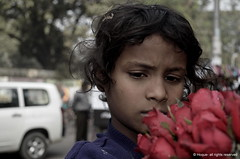 6529448285 b661b558a1 m Direct Car Insurance in BOSTON MA 02105 has never been easier