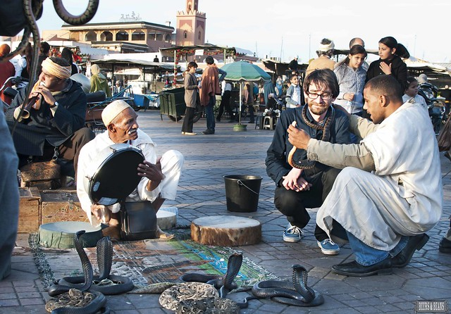 6531679889 5208ea0e65 z Autumn Days at Djemaa el Fna Square in Marrakech